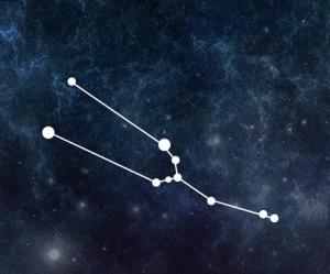 Astrologie stier